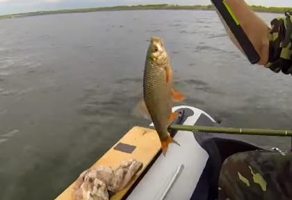 ловля с лодки на плещеевом озере